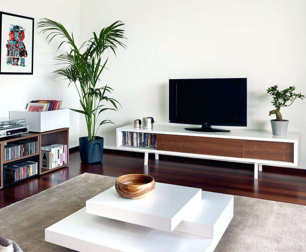 Tv Stand : White And Walnut Tv Stand Agreeable Dark Brown Flooring In Walnut Tv Cabinets With Doors (View 15 of 20)