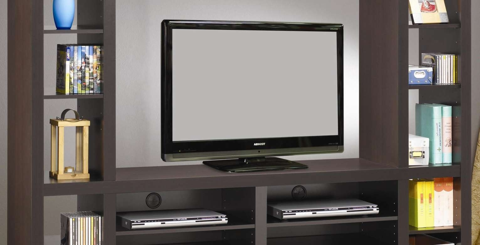 Cabinet : Tv Stands Elegant Design Tv Stand With Doors Ideas In Large Tv Cabinets (View 17 of 20)