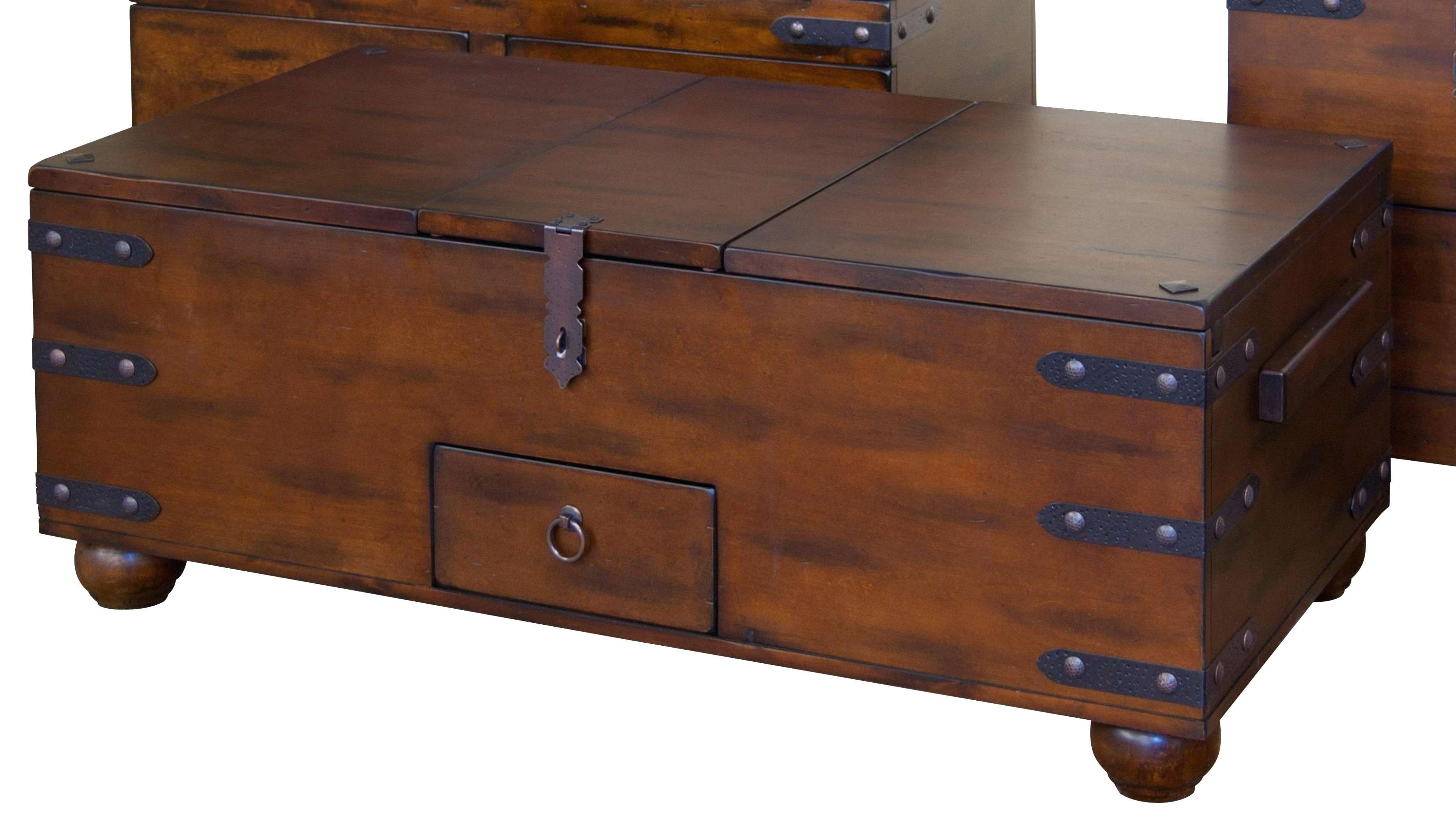 Cd Wall Mounted Storage Image Of Wood Coffee Table Trunk Shoe Regarding Newest Cd Storage Coffee Tables (View 5 of 20)