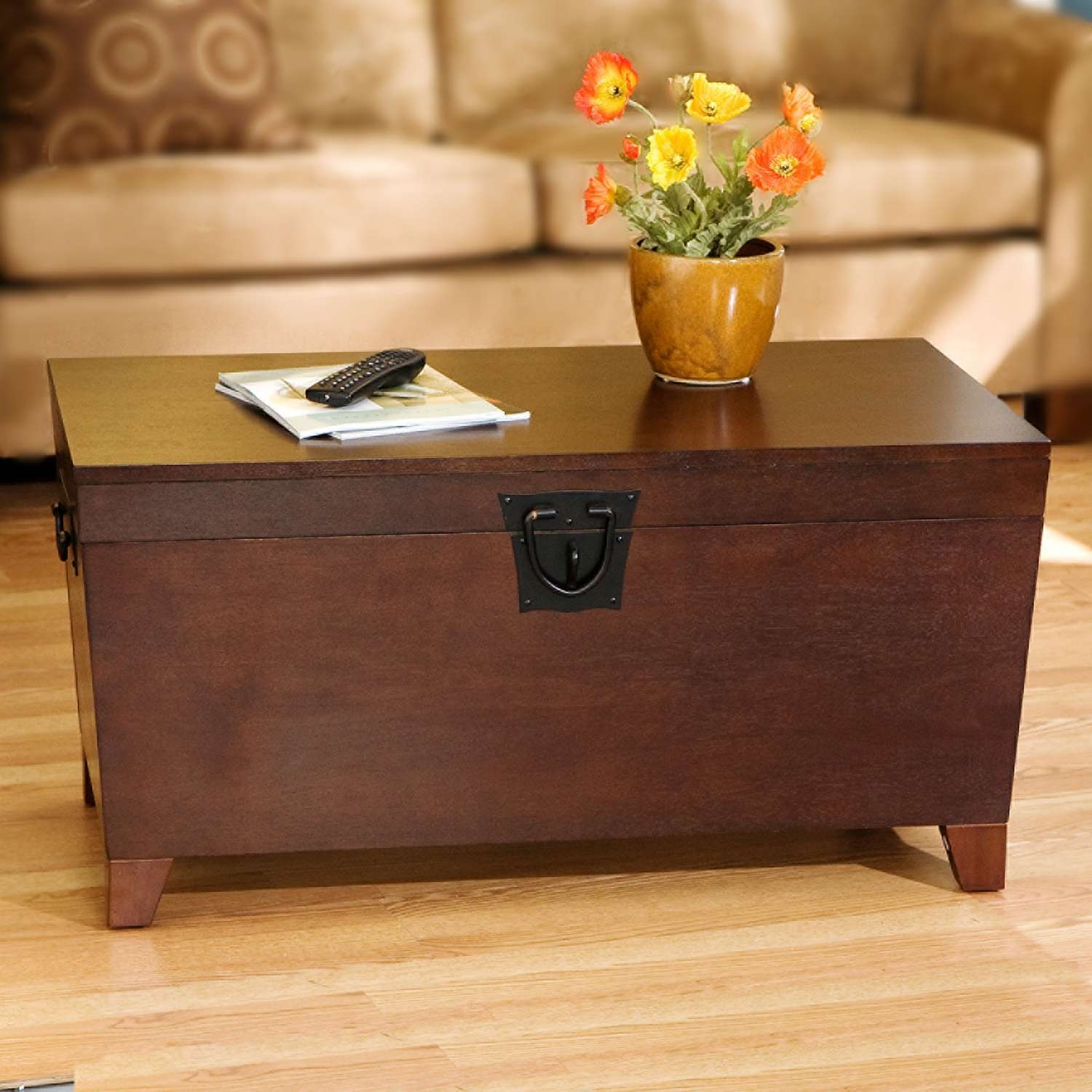 20 Best Ideas of Wooden Trunks Coffee Tables