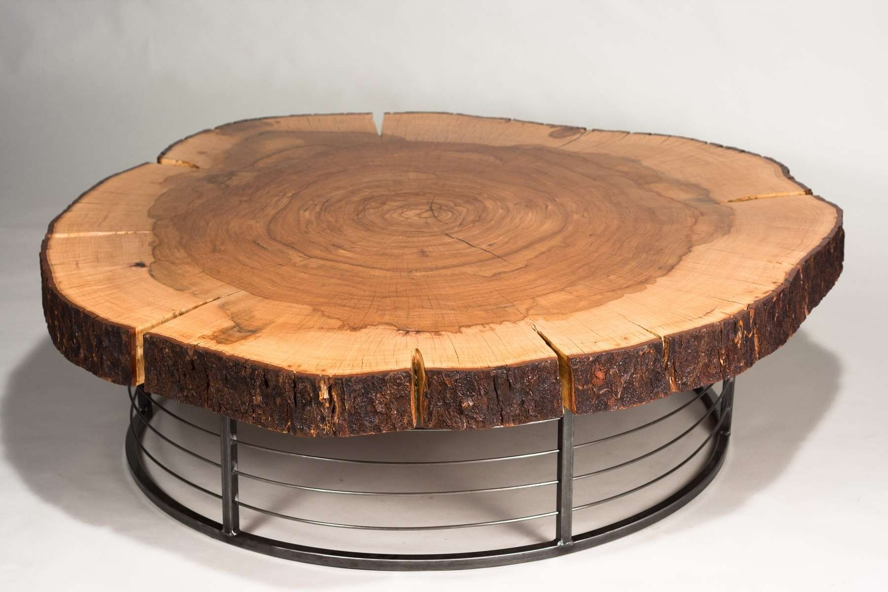 Coffee Tables Ideas: Stump End Amish Tree Trunk Coffee Table For Regarding Fashionable Stainless Steel Trunk Coffee Tables (View 4 of 20)