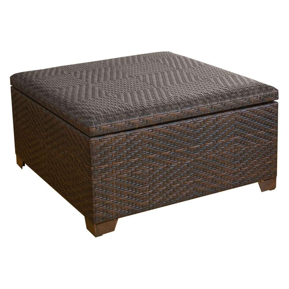 Current Square Storage Coffee Table Throughout Coffee Tables Decor : Outdoor Storage Coffee Table Brown Square (View 9 of 20)