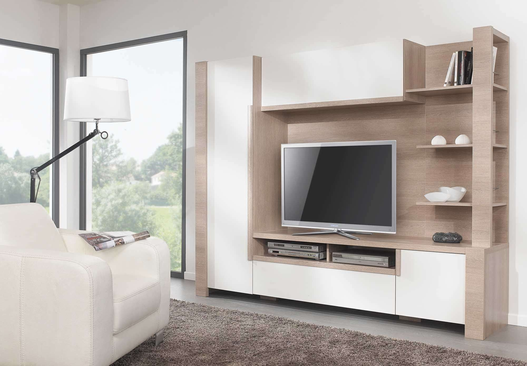 Image Gallery of Tv Cabinets And Bookcase (View 20 of 20 Photos)