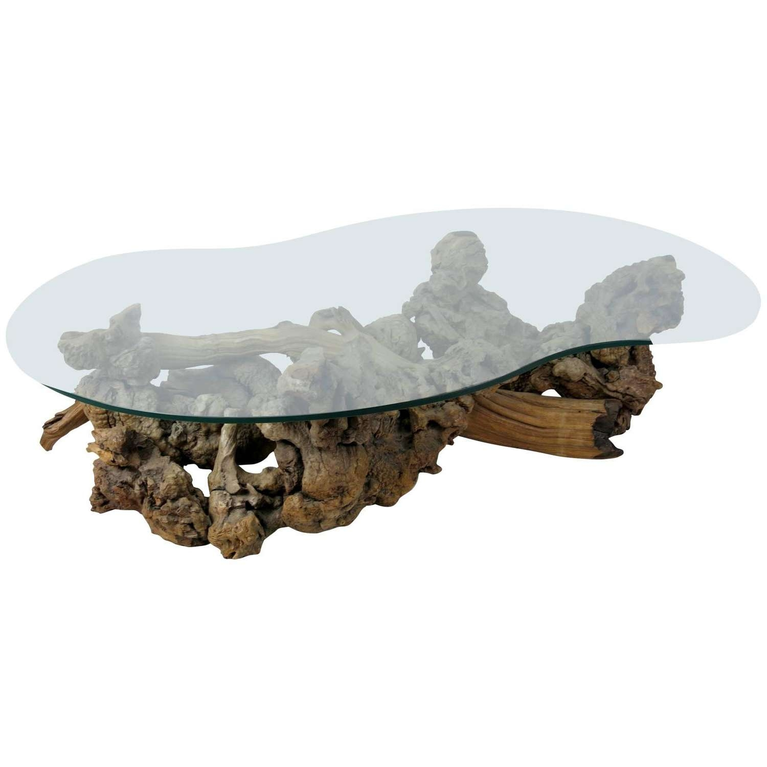 Most Recent Free Form Coffee Tables With Large Root Burl Driftwood Coffee Table With Free Form Glass Top At (View 14 of 20)
