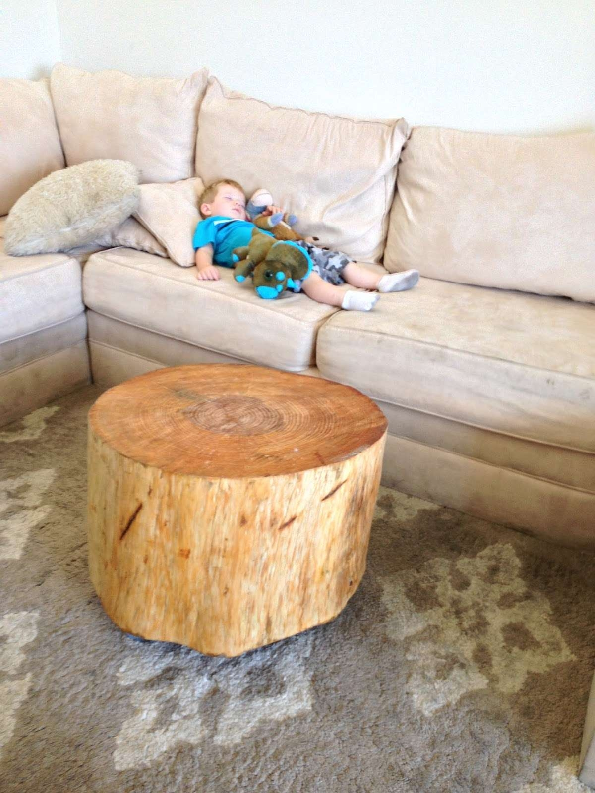 Tree Stump Chair – Matt And Jentry Home Design With Most Recent Tree Trunk Coffee Table (View 14 of 20)