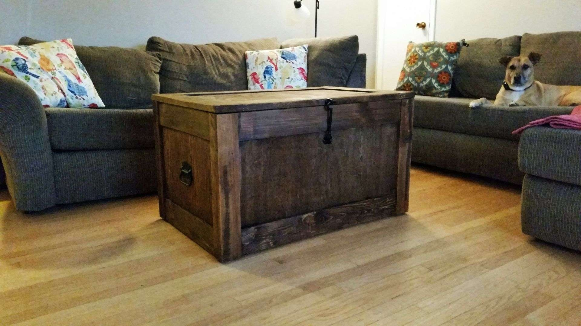 Trendy Storage Trunk Coffee Tables Pertaining To Buy A Handmade Barnwood, Trunks, Chests, Steamer Trunk, Trunk (View 16 of 20)