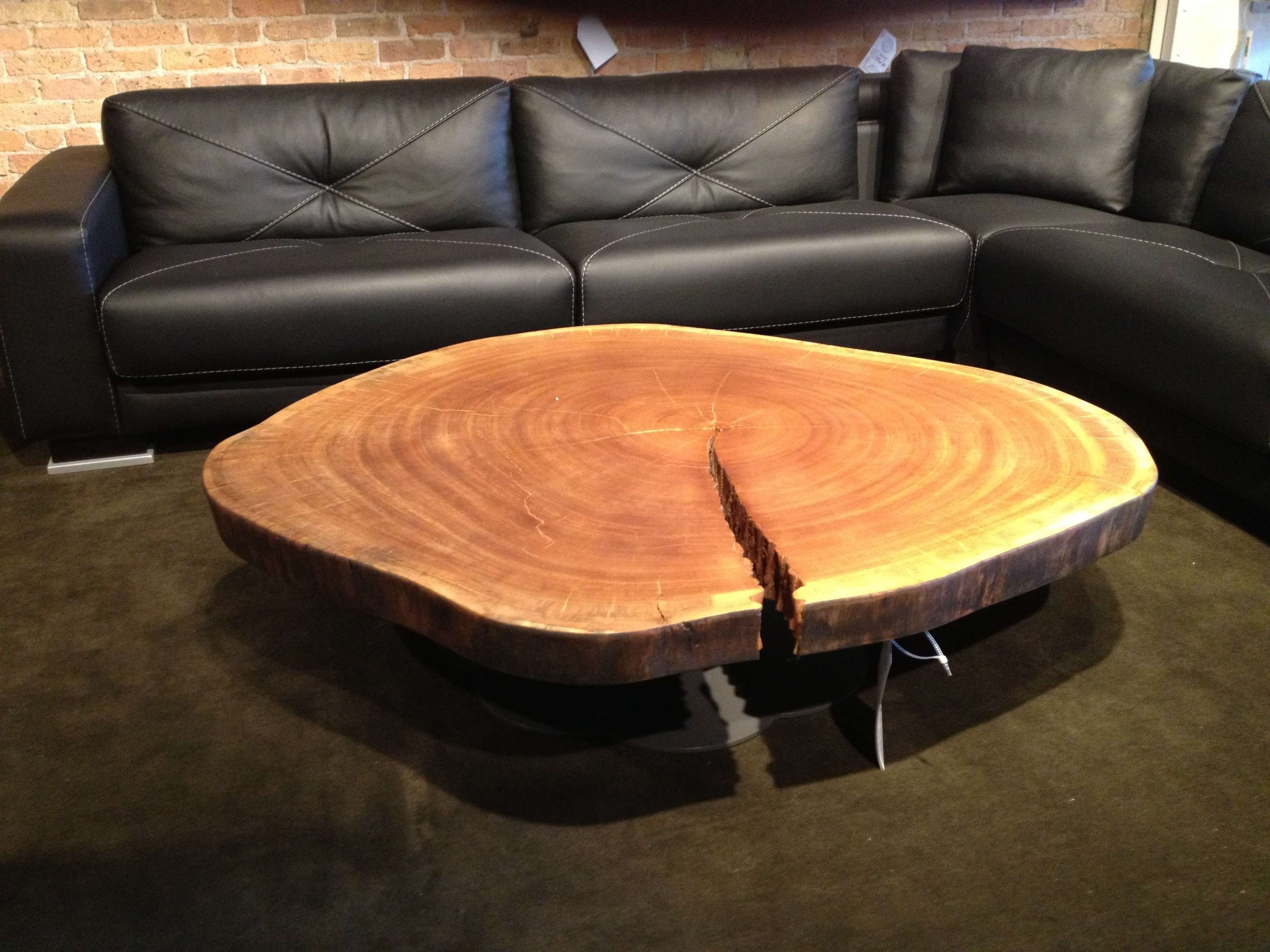 Trendy Tree Trunk Coffee Table Intended For Tree Root Table Base Wood Tree  Trunk Coffee Table