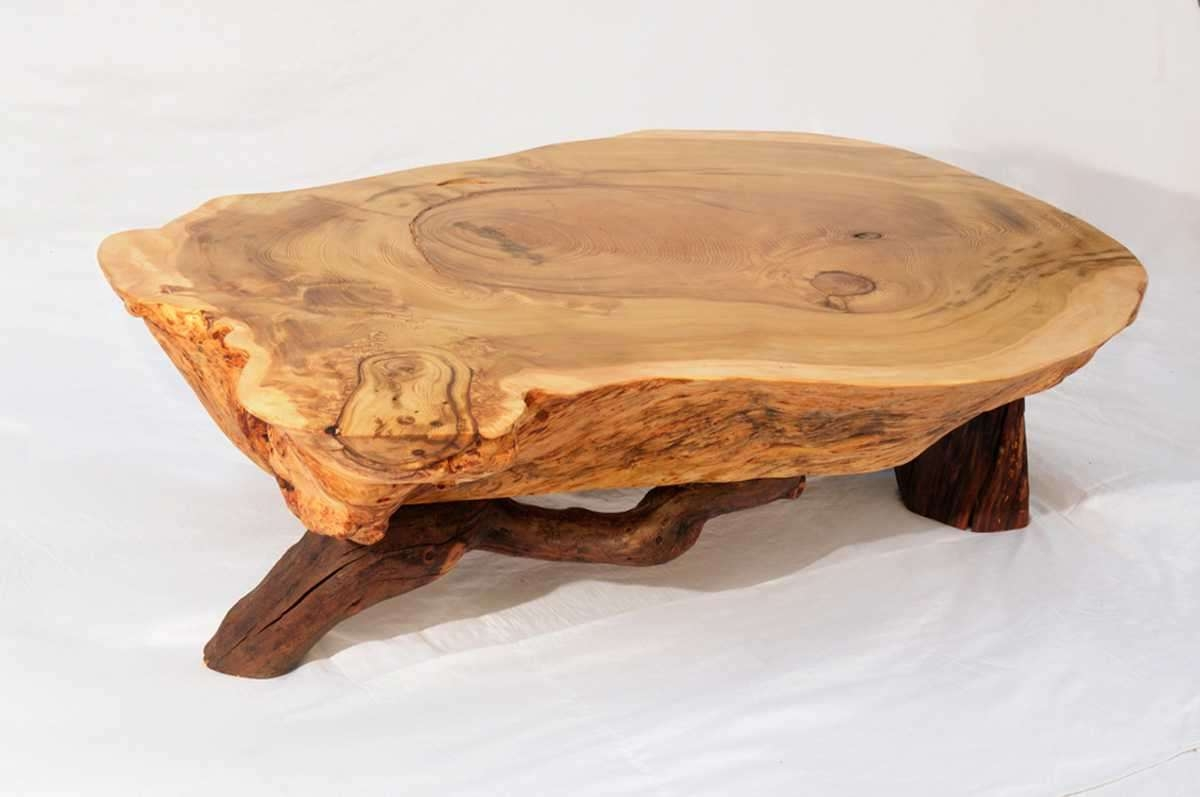 Unique Coffee Tables (View 19 of 20)