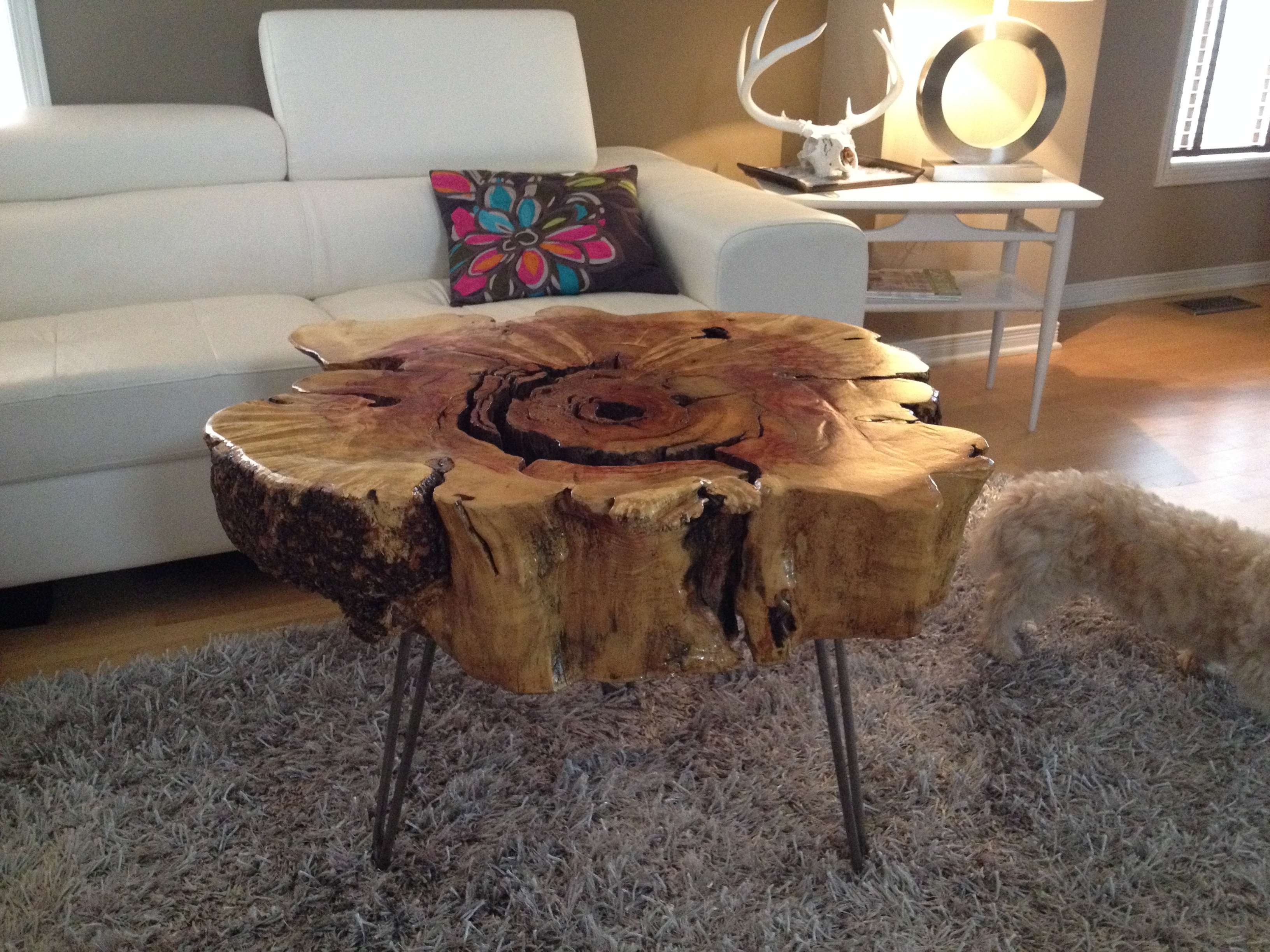 Well Liked Tree Trunk Coffee Table With Regard To Exciting Tree Stump Side Table Silver Idea Tree Stump Coffee Table (View 20 of 20)