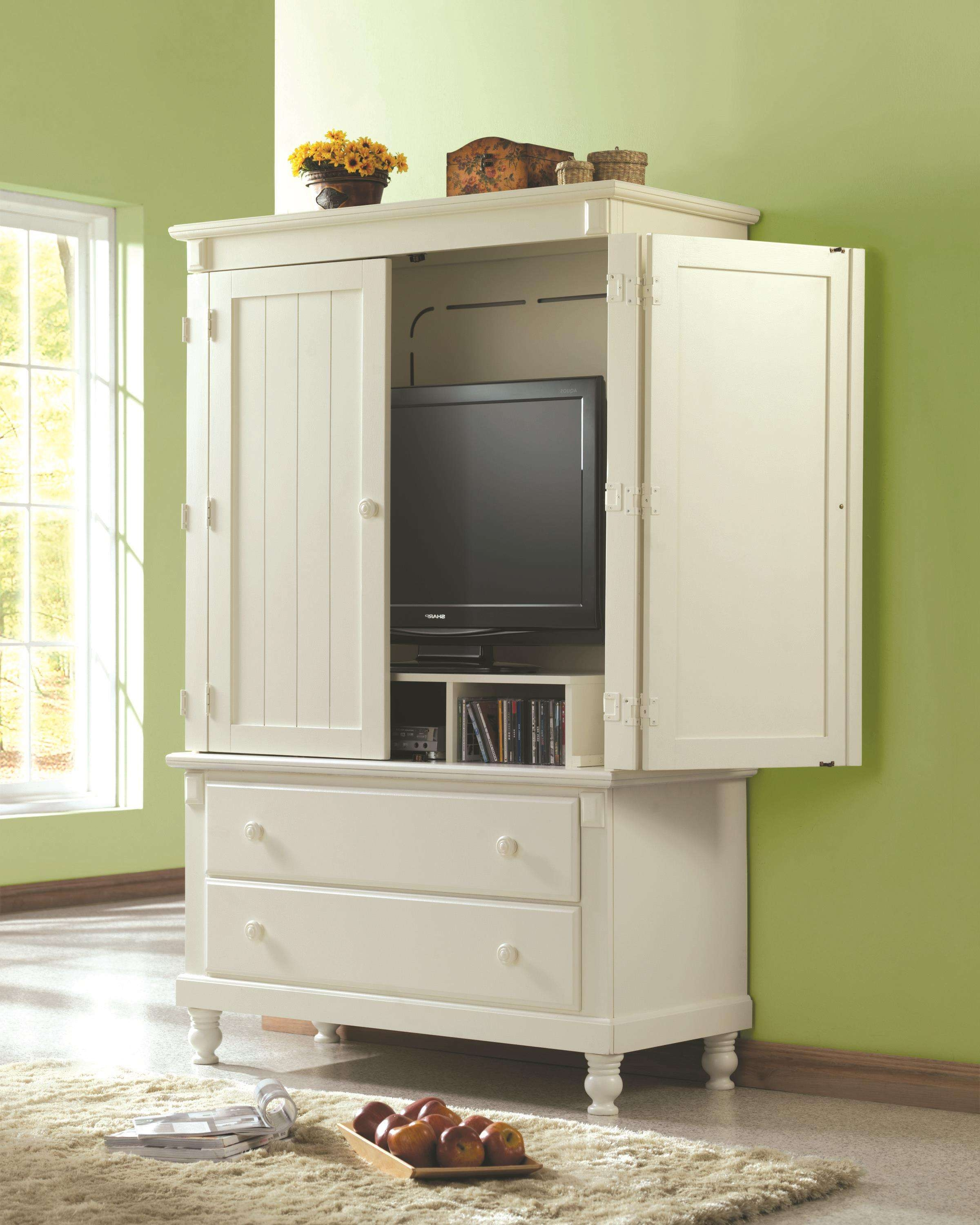 White Wooden Cabinet With Double White Wooden Door Having White Pertaining To Enclosed Tv Cabinets For Flat Screens With Doors (View 20 of 20)