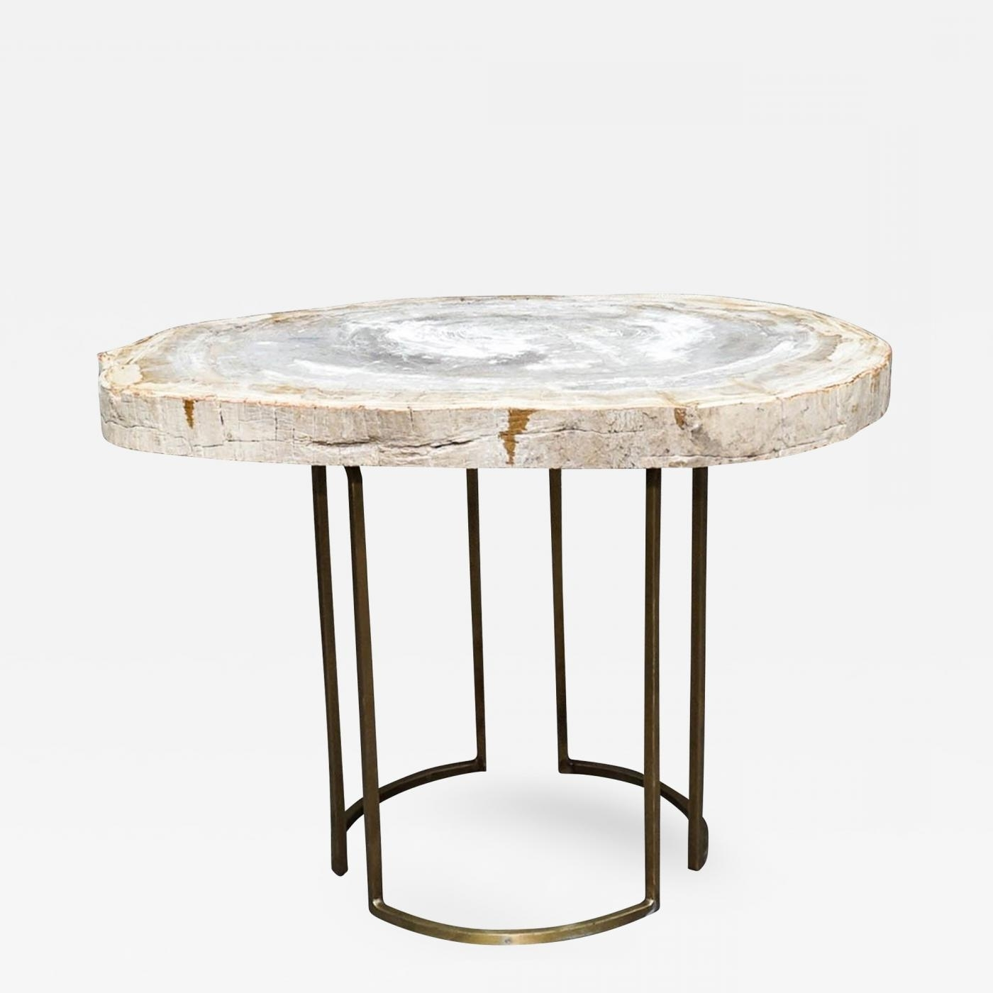 Custom Petrified Wood Slab Accent Table With Brass Base Inside Latest Slab Large Marble Coffee Tables With Brass Base (View 4 of 20)