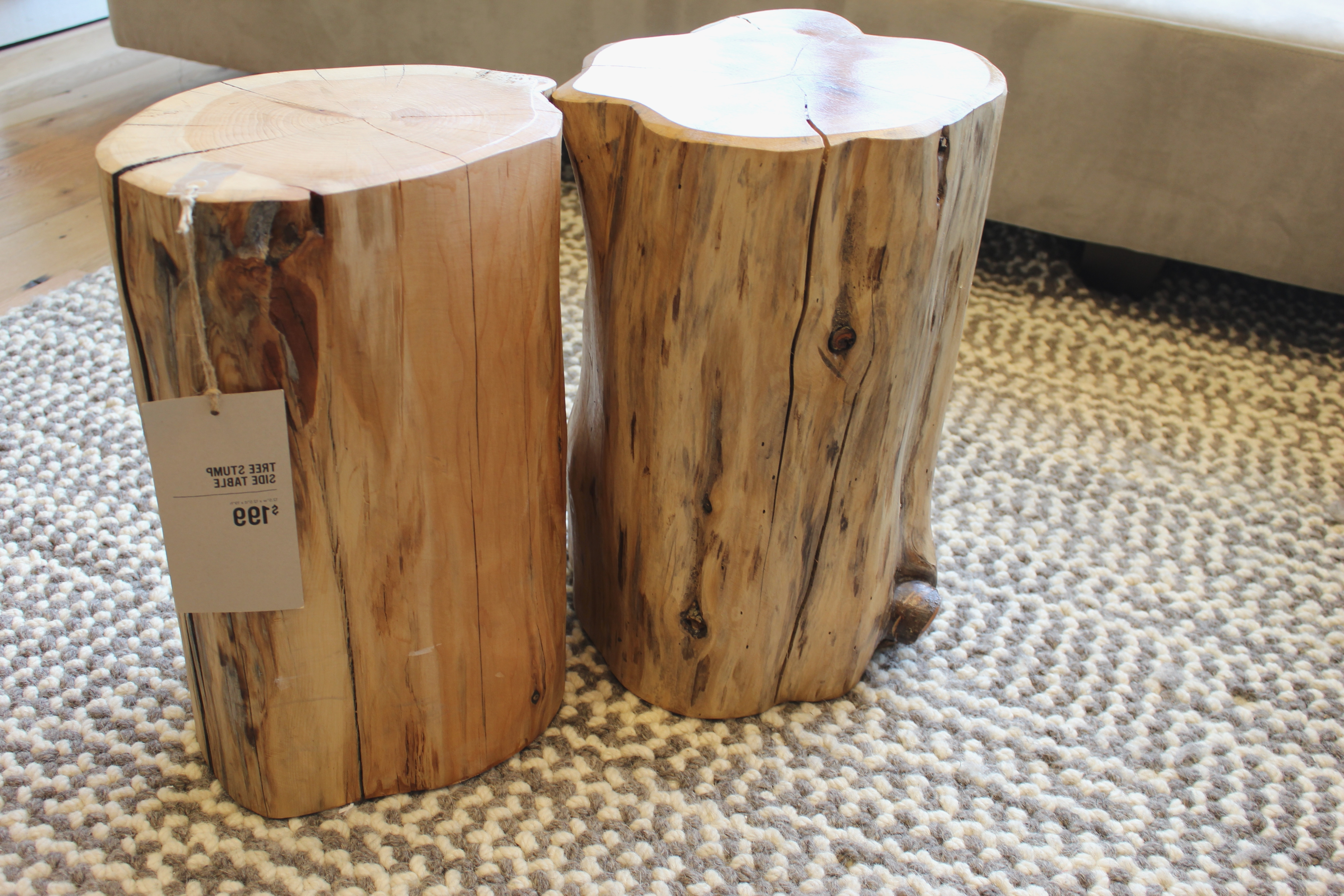 Fashionable Sliced Trunk Coffee Tables Inside Cheap Wood End Tables Magnificent Stump Table 3 Chair Tree Seating (View 7 of 20)