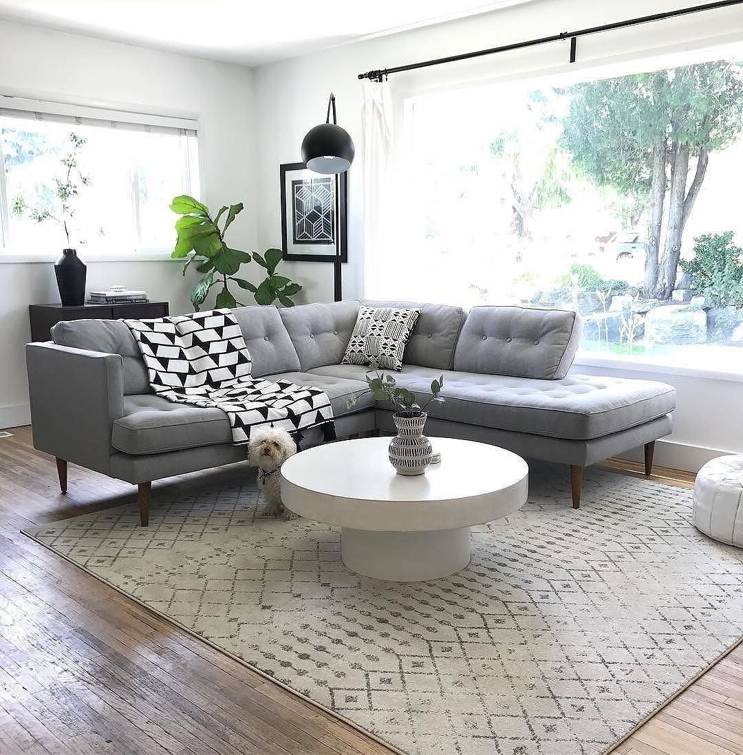 I Spy With My Little Eye Sunday Hideaways With Our Fur Babies Intended For Famous Shroom Coffee Tables (View 11 of 20)