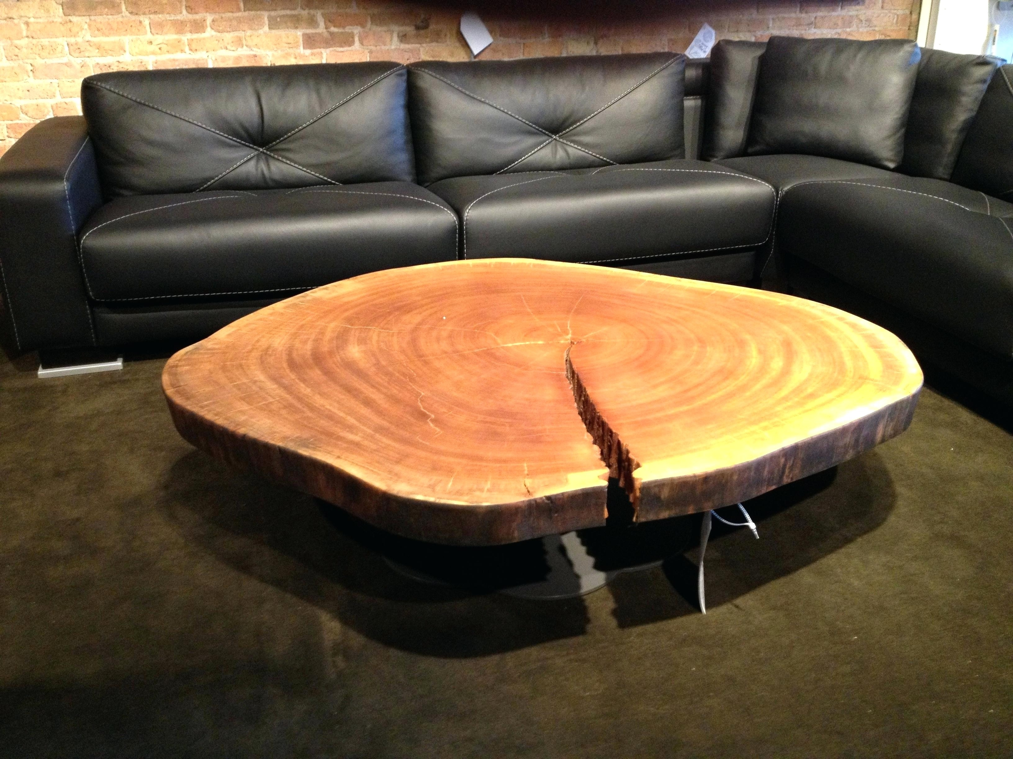 Most Current Tree Trunk Coffee Table With Tables Wood Slice Awesome Within Most Recent Sliced Trunk Coffee Tables (View 12 of 20)