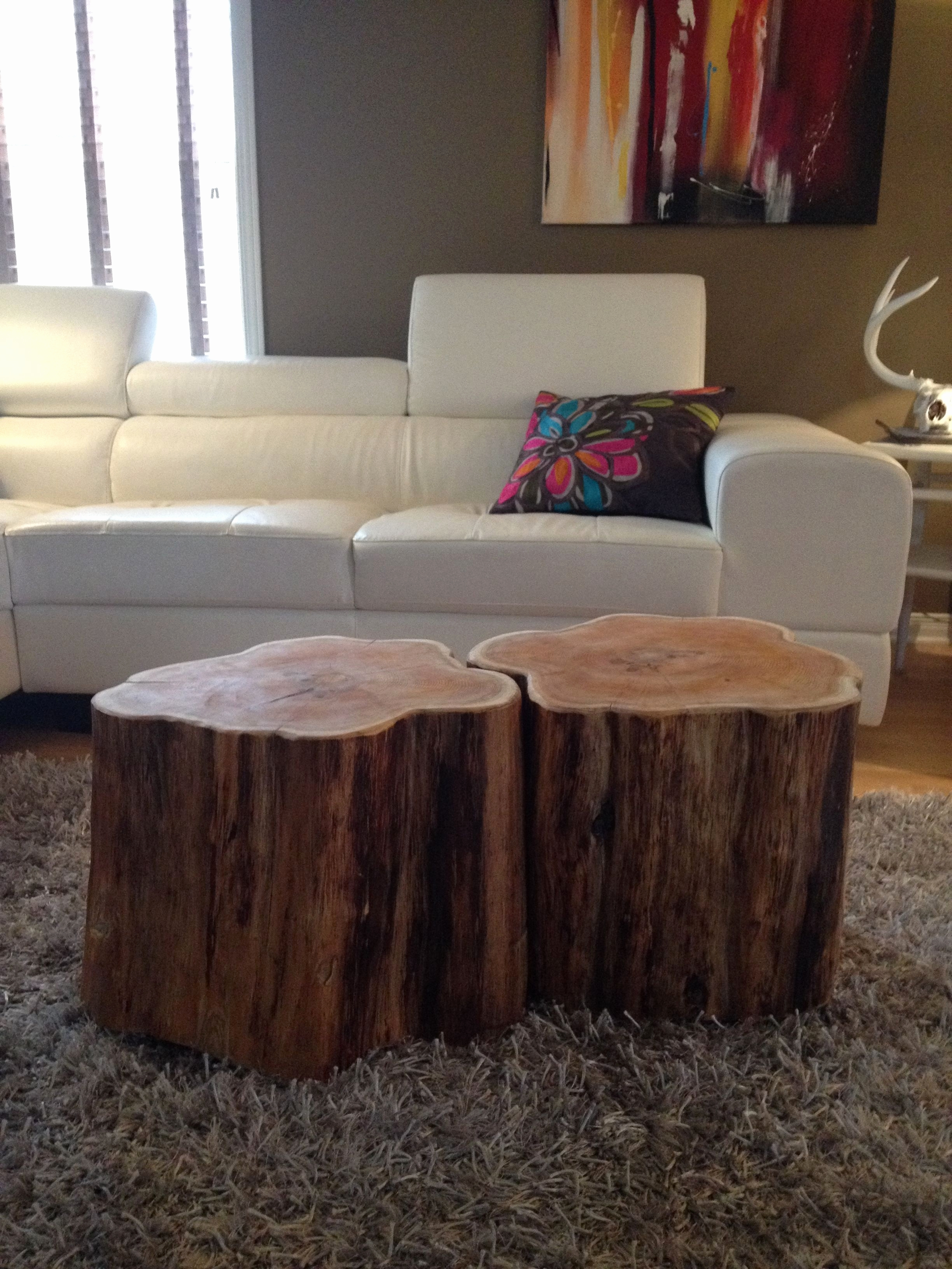 Well Liked Sliced Trunk Coffee Tables In Tree Slice Coffee Table Luxury Stump Coffee Tables Serenitystumps (View 17 of 20)