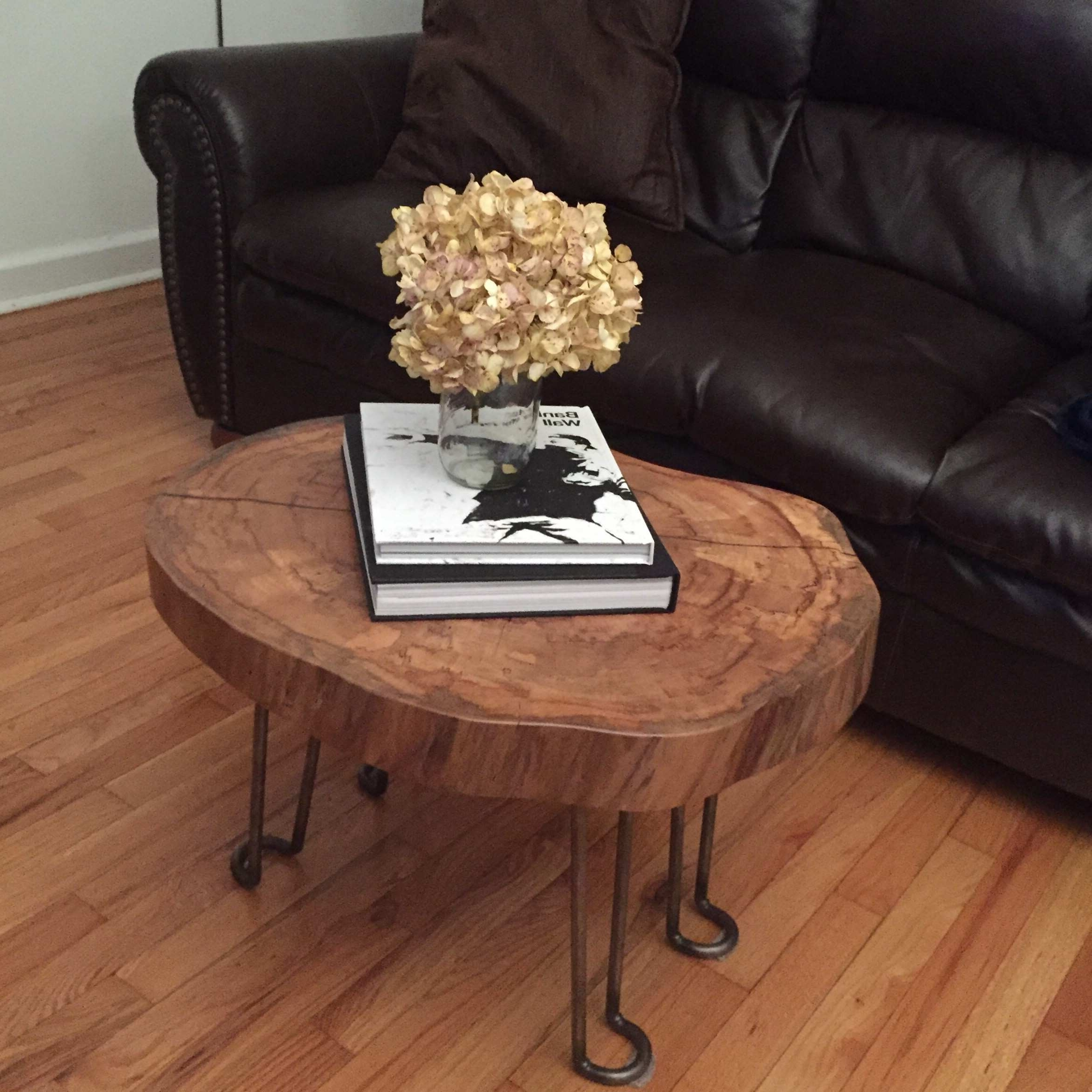 Featured Photo of Sliced Trunk Coffee Tables