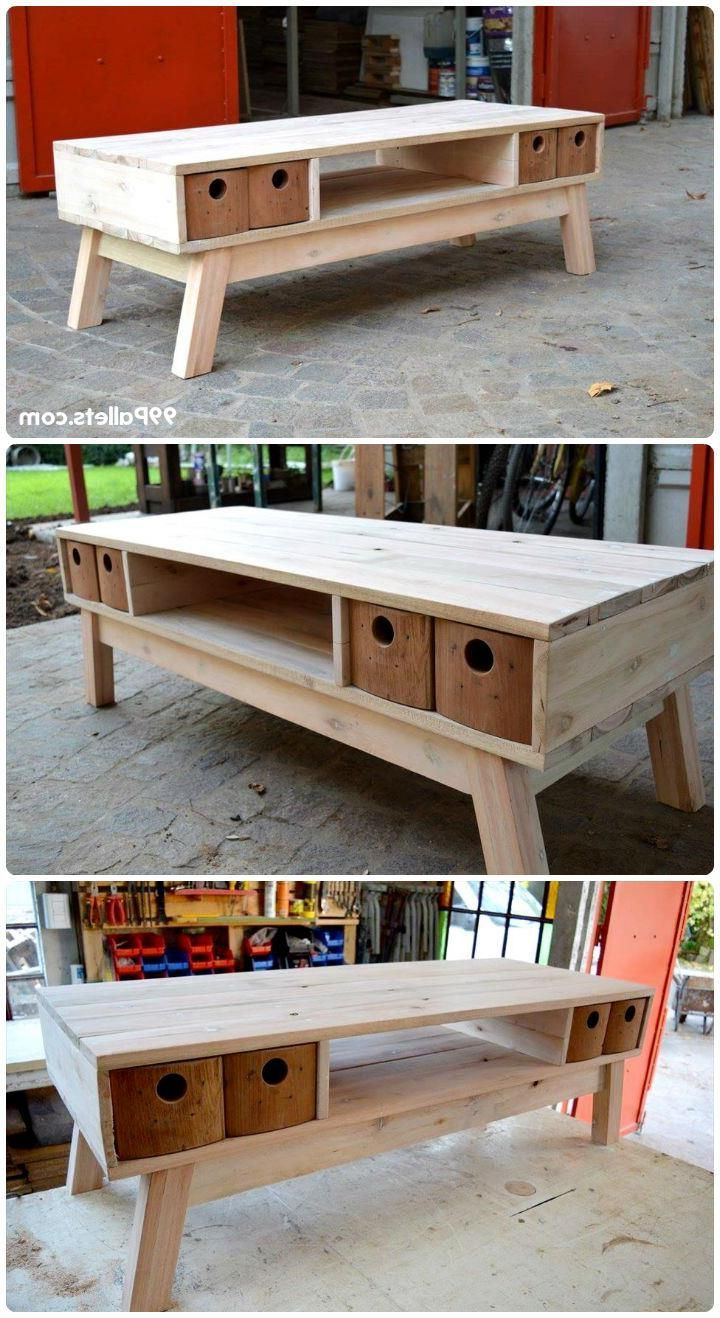 15+ Budget Friendly & Unique Diy Pallet Projects Ideas | Furniture Within Walters Media Console Tables (View 19 of 20)