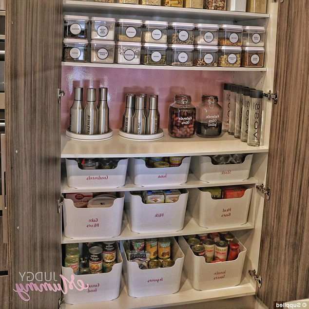 Camila Kitchen Pantry Pertaining To Popular Women, 32, Reveals How She Transformed Her Kitchen For $ (View 8 of 20)