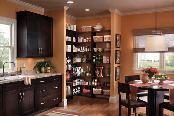 Collette Kitchen Pantry With Favorite Keeping The Kitchen Pantry Spic And Span – Daily Nation (View 19 of 20)