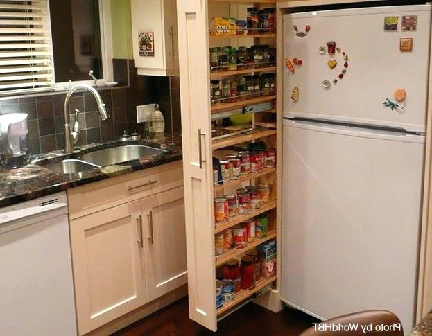 Kitchen Pantries – Small Kitchen Pantry With Recent Crimmins Kitchen Pantry (Gallery 16 of 20)