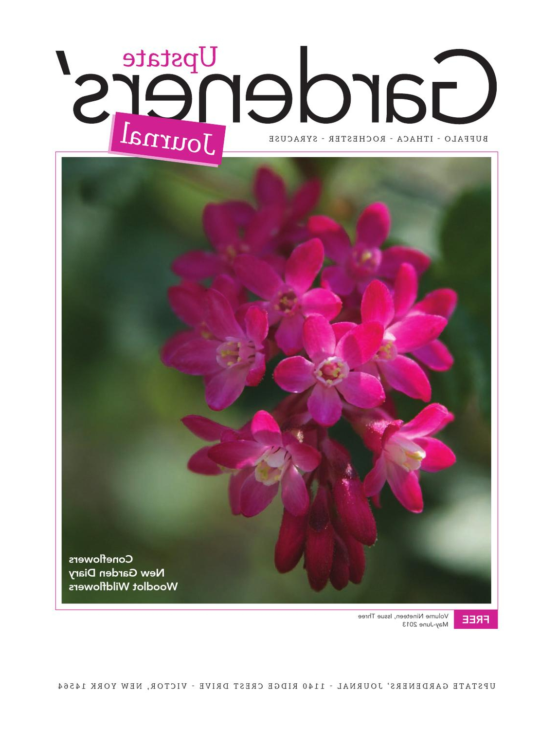 May June 2013 Ugjupstate Gardeners' Journal – Issuu With Regard To Best And Newest Copper Grove Liatris Black And Satin Silver Coffee Tables (View 11 of 20)
