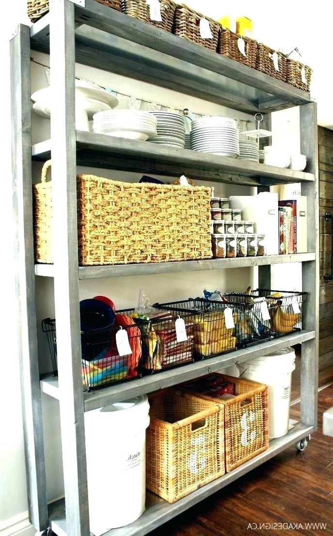 Metal Kitchen Pantry In Most Recently Released Metal Kitchen Storage Cabinet – Wildlybrittish (View 8 of 20)