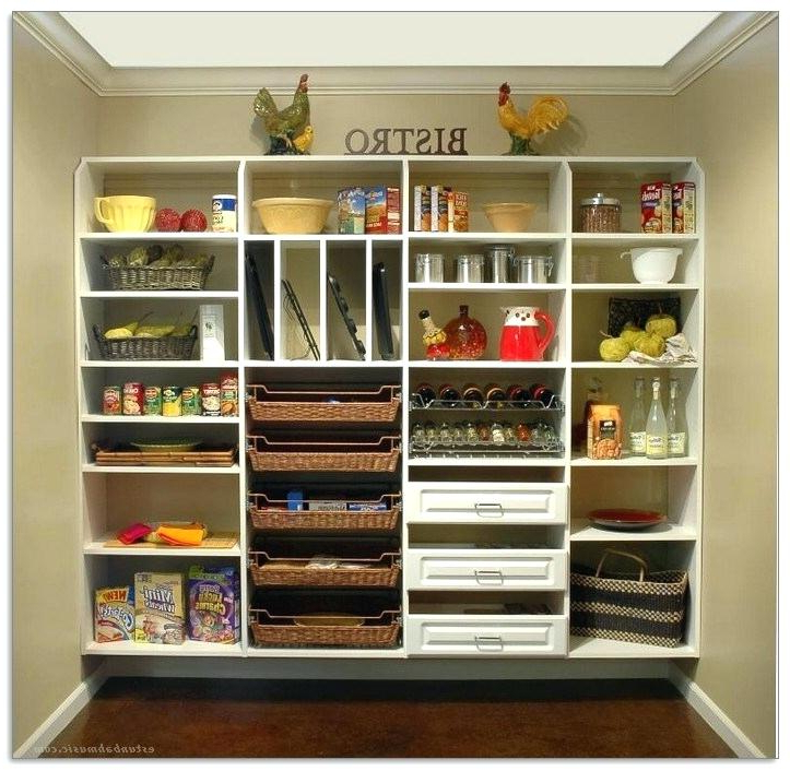 Wall Mounted Pantry Shelving – Inclusionrider (View 19 of 20)