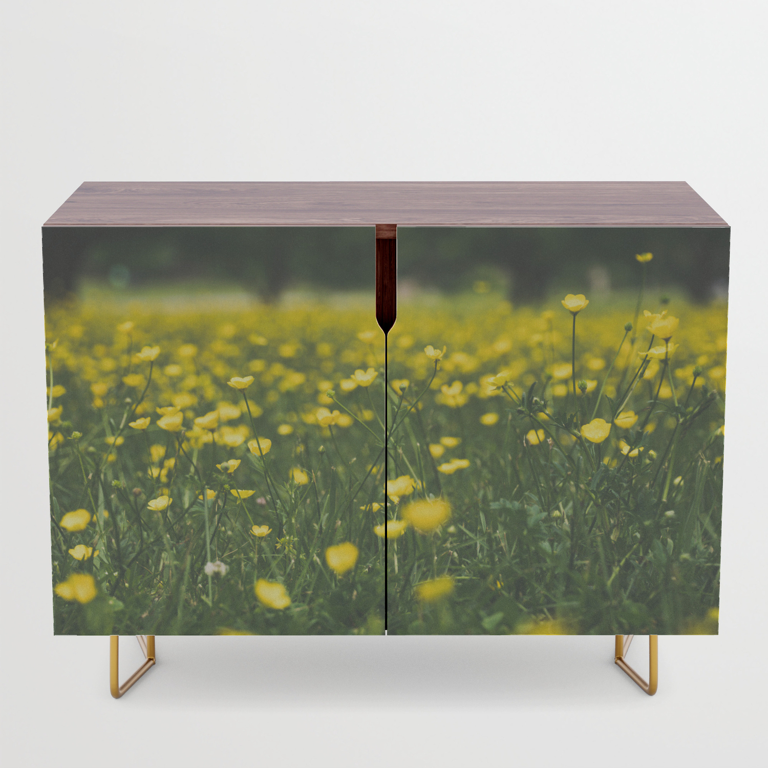 Build Me Up Buttercup Credenza Pertaining To Yellow Flora Credenzas (View 3 of 20)