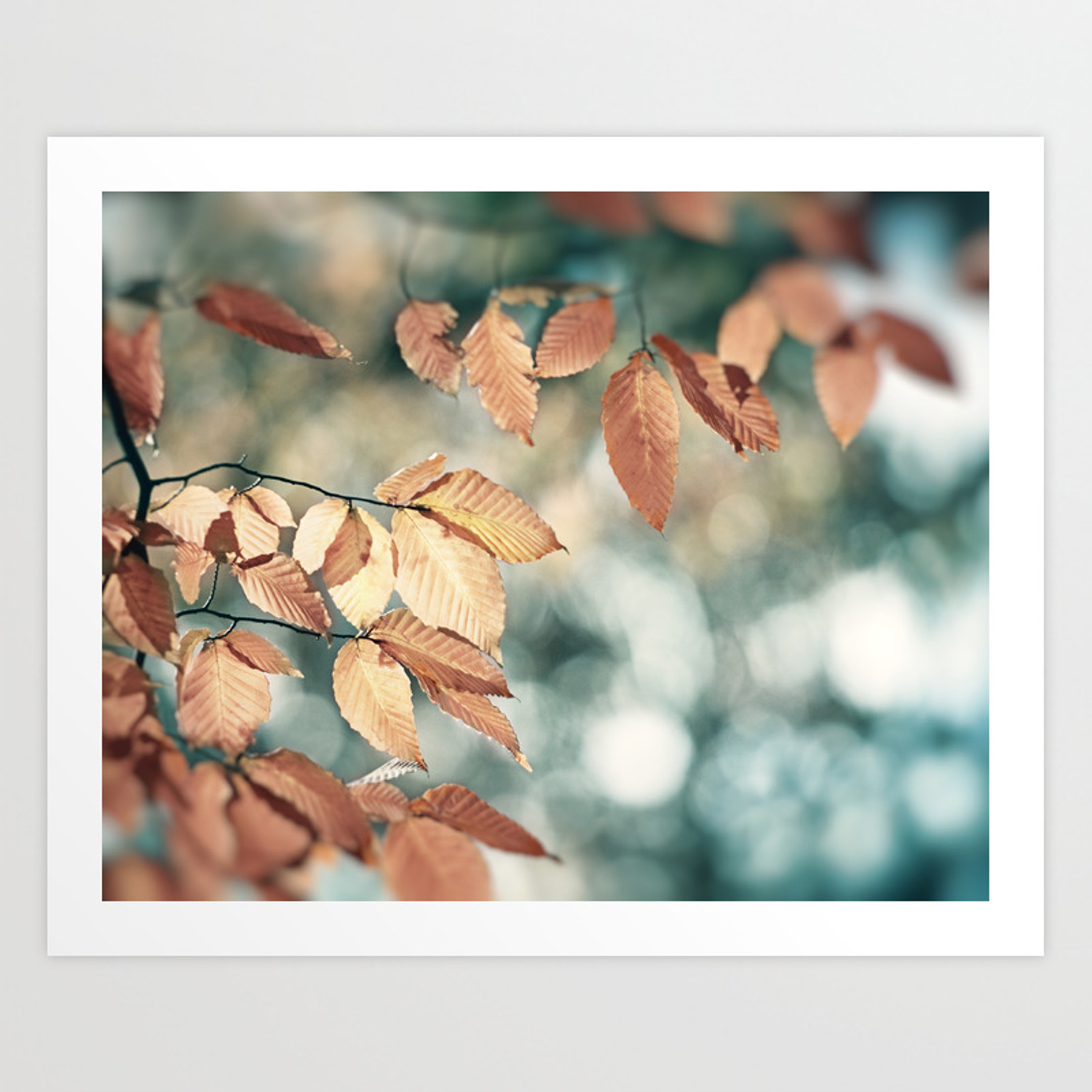 Teal Brown Nature Photography, Aqua Blue Copper Leaves, Turquoise Leaf Tree  Branches, Fall Autumn Art Print Within Copper Leaf Wood Credenzas (View 19 of 20)