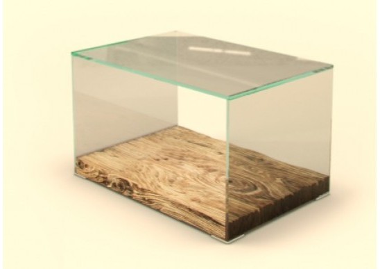 Monza Wood & Glass Modern End Tables | Contemporary End Tables Inside Monza Tv Stands (View 14 of 20)